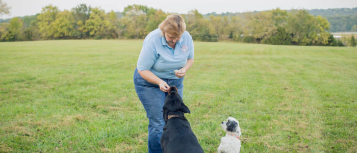 Donna - D.O.G. Obedience Group Trainer - Slider 3