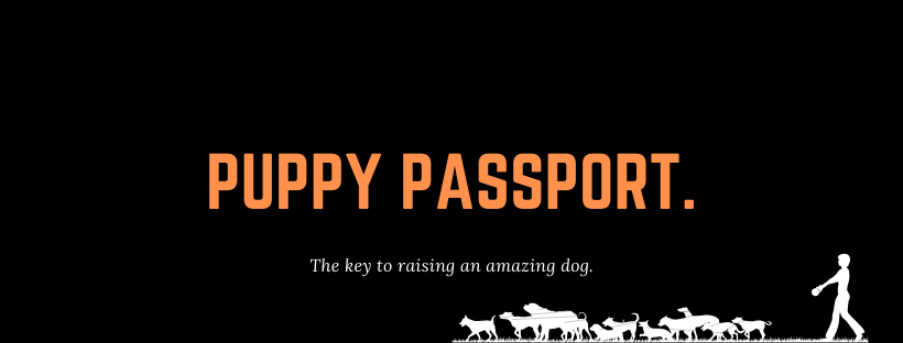 Puppy Passport Banner